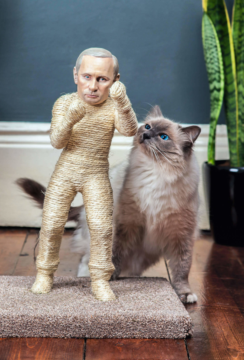 Putin Cat Scratching Post
