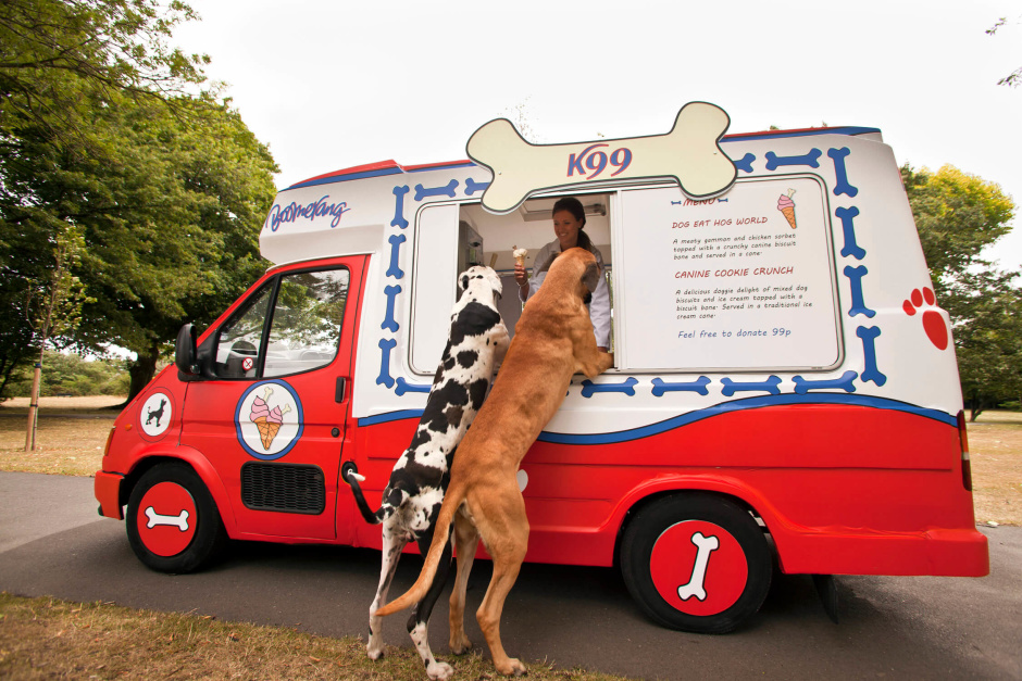 dogy_ice_cream-7124