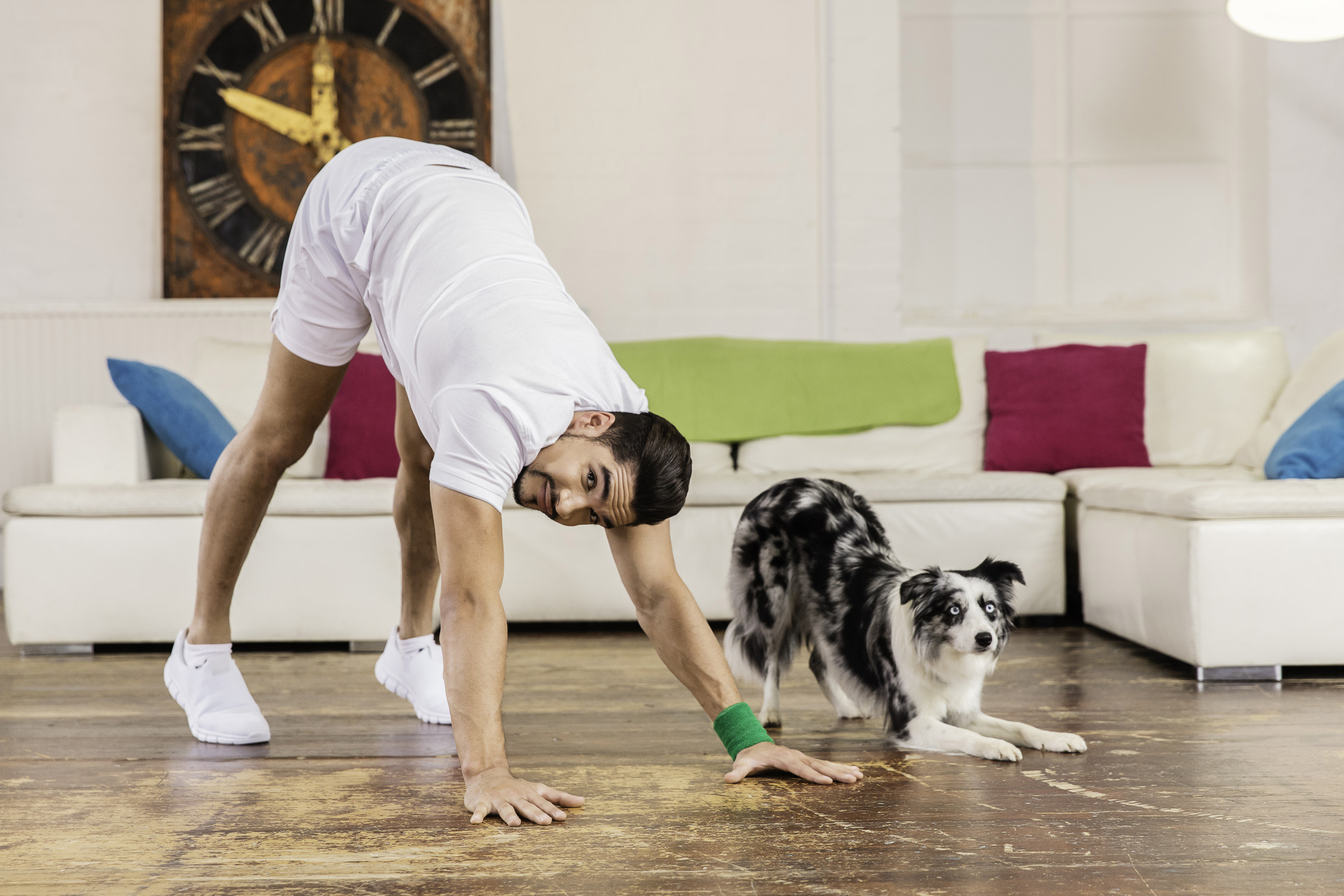 Downward dog: Olympian Louis Smith limbers up with Gift the dog as part of the world's first celebrity workout video for man and dog. 'Petsercise with Louis Smith' was created by More Than insurance and Wagglepets and can be viewed for free at www.morethan.com
