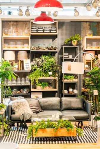Personal plant shopper-06278