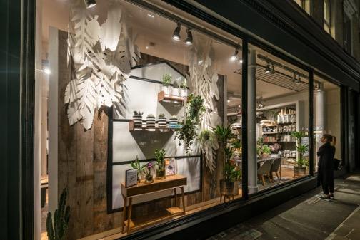 Personal plant shopper-06444