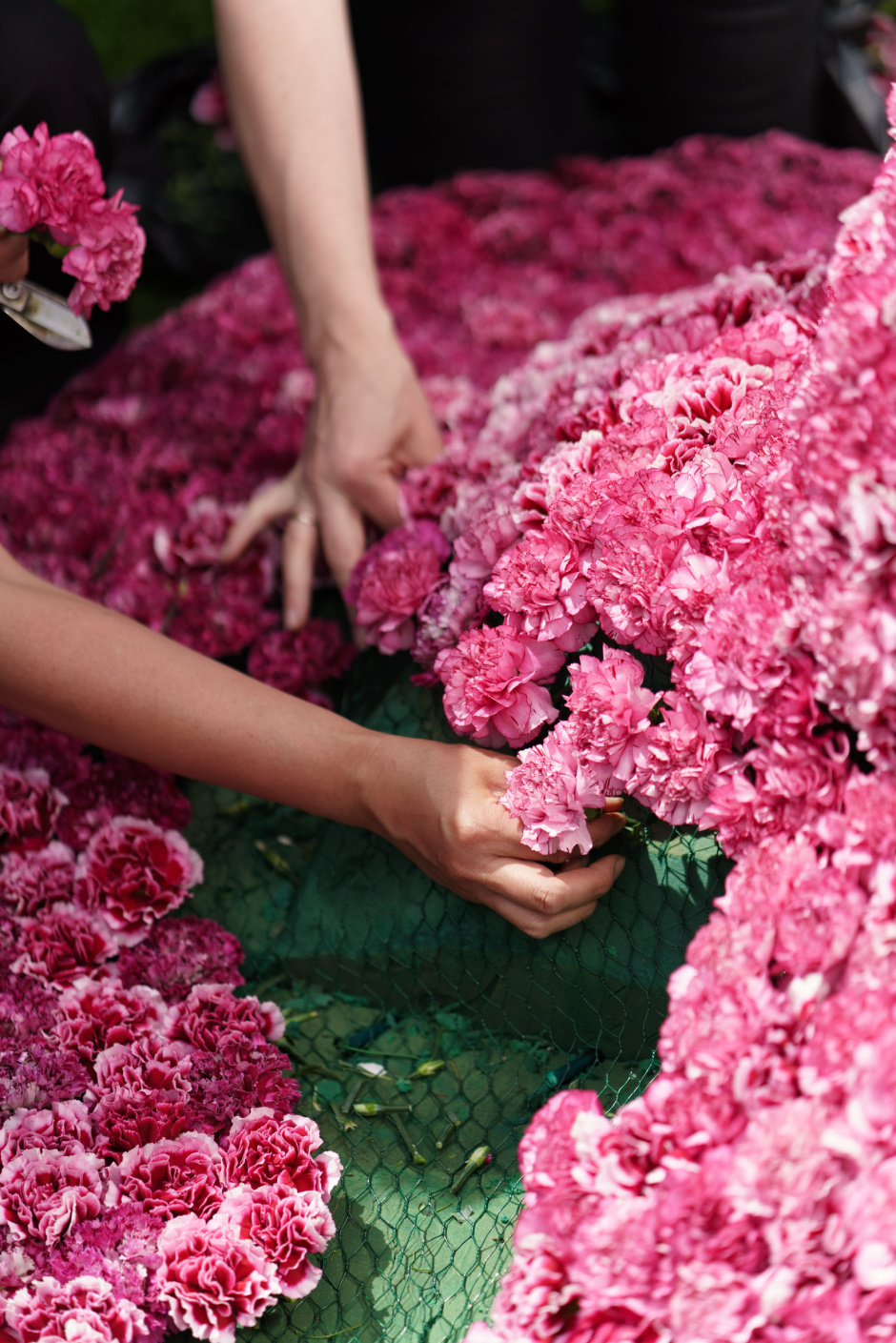Volunteers add carnations to the installation 'Neoteric' by In W